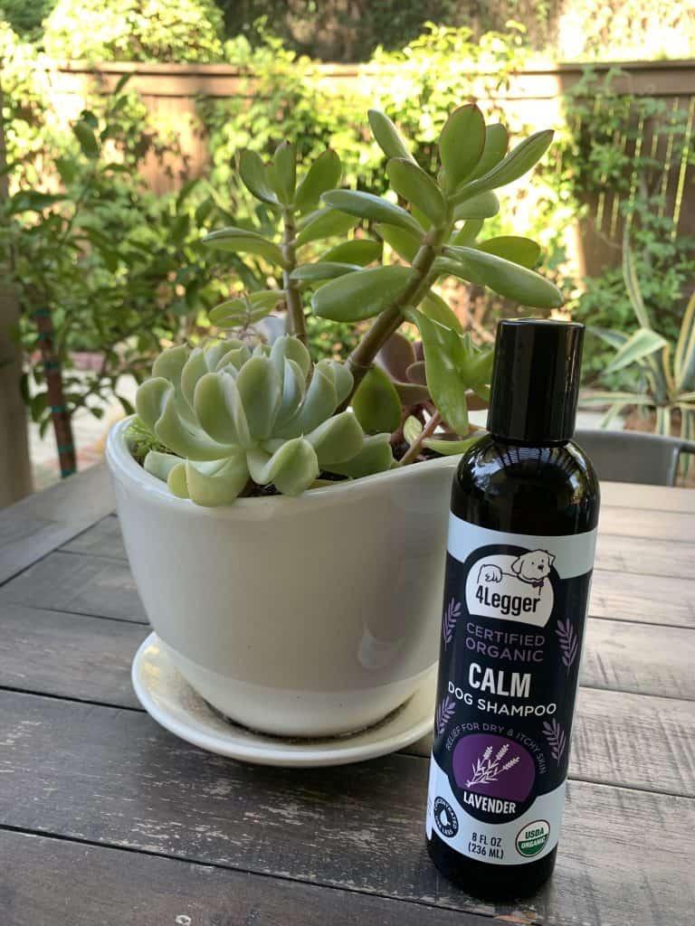 4-Legger-All-Natural-Calm-Lavender-Dog-Shampoo