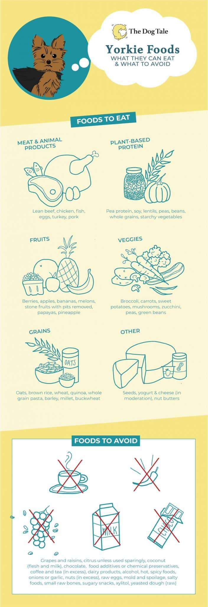 Foods Yorkes can eat and what foods to avoid