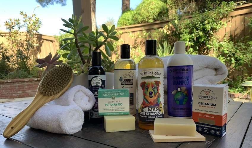 All of the best dog shampoo brands in one photo